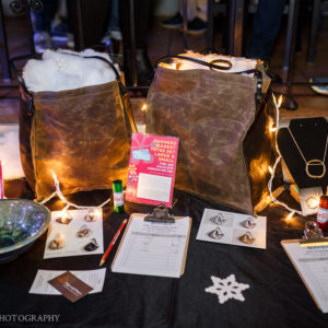 116 winterkids license to chill fundraiser 2019 portland house of music portland maine event photographer whitney j fox 6232 w