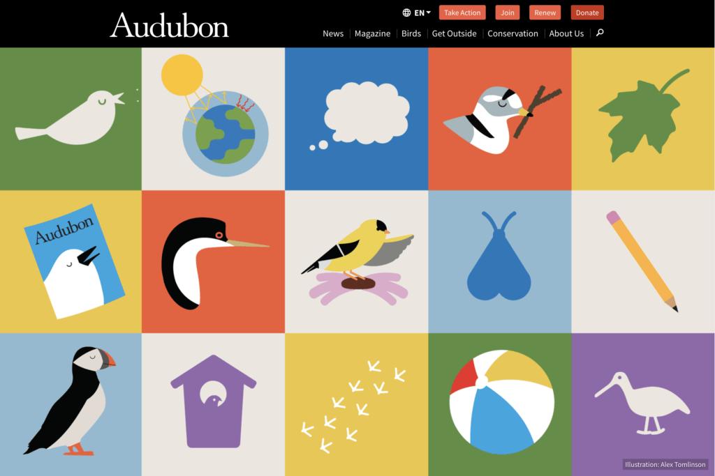 Audubon for Kids