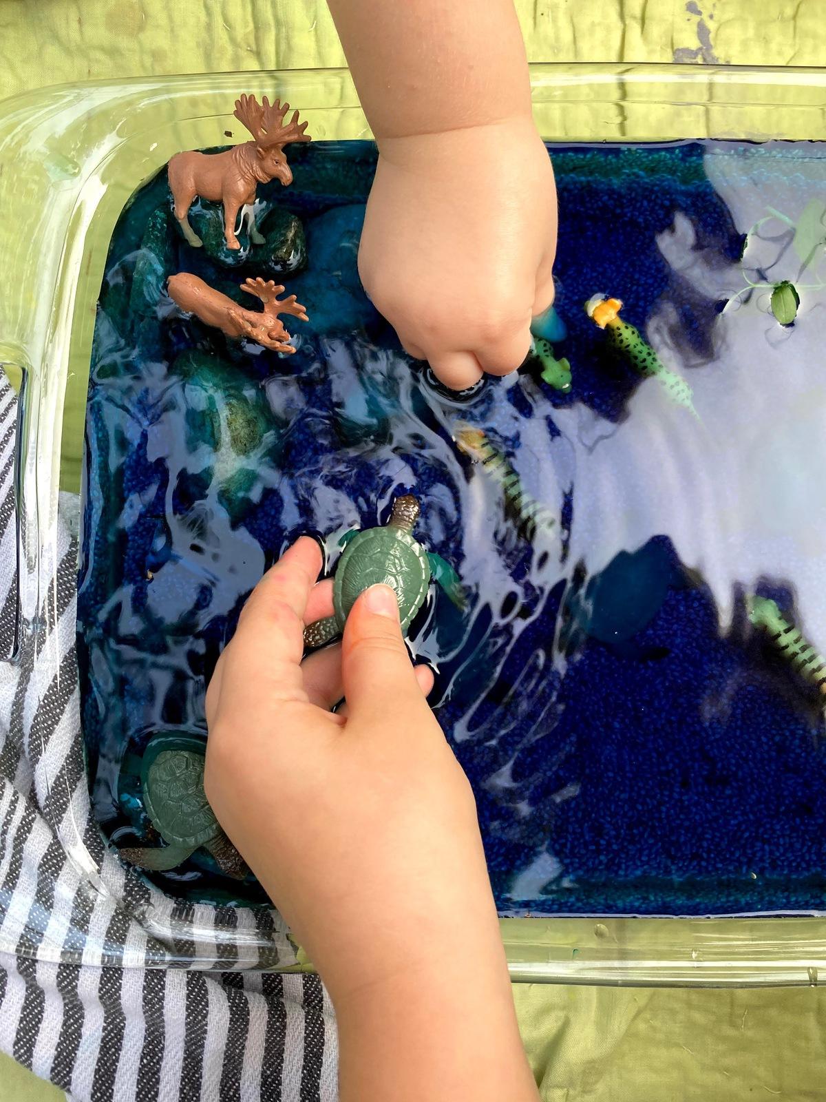 Swimming Animals Activity WinterKids IMG 7565