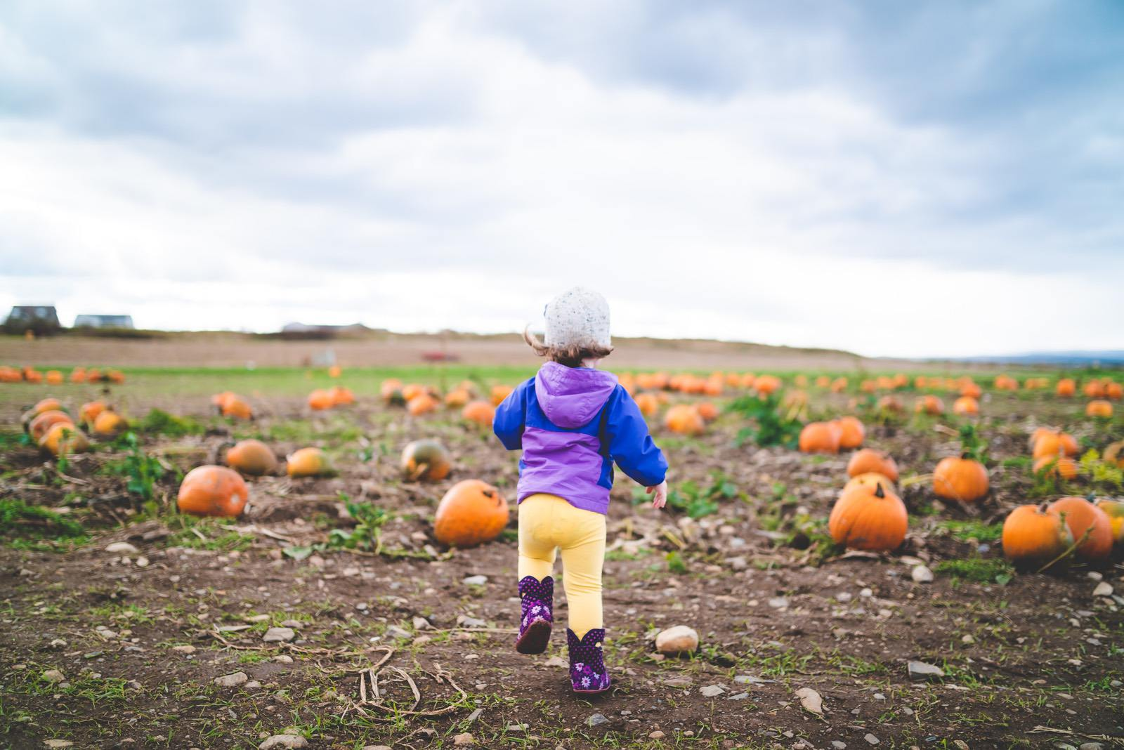 Outdoor Learning Activities that Celebrate Fall WinterKids1
