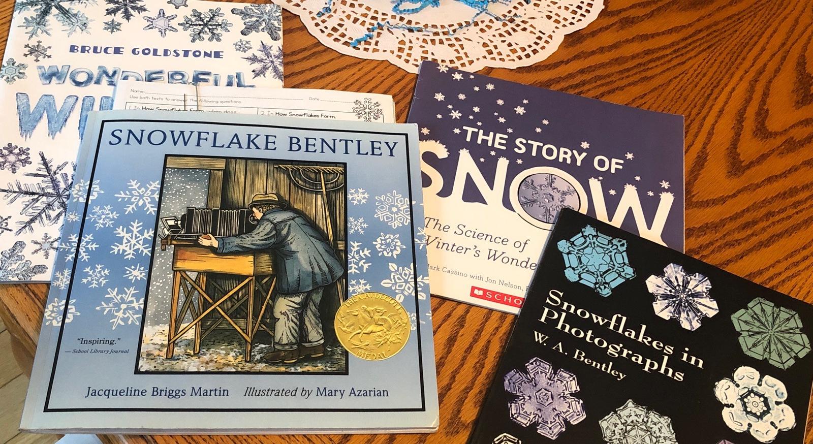 Studying Snow Crystals WinterKids Teachers Sharing Series9