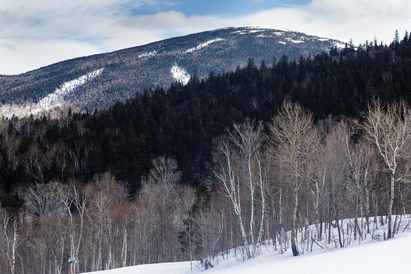 WinterKids Downhill 24 2021 SDP 3265
